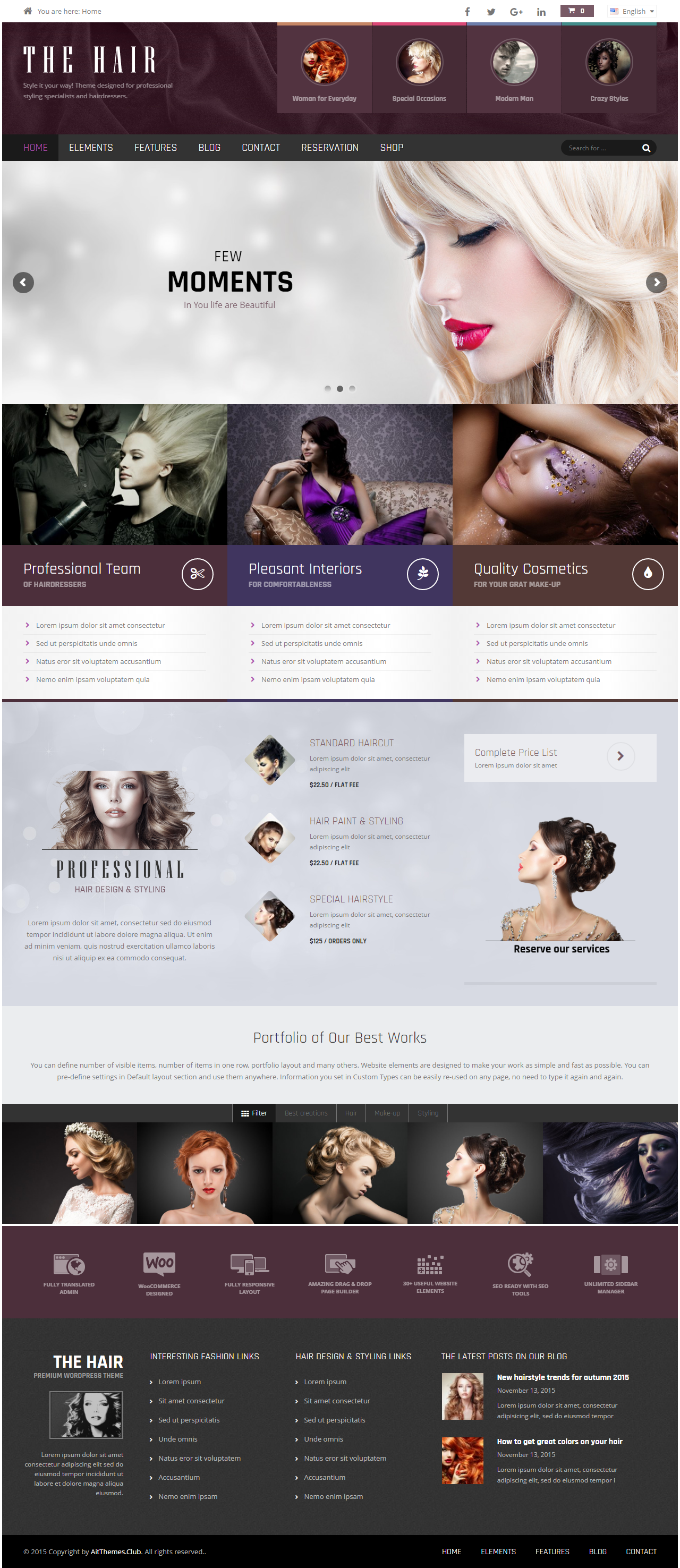 web design services in pune Web Design Services in Pune theme for hair salons